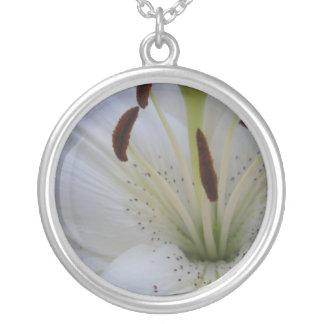 Abgewischte weiße Lilie Versilberte Kette