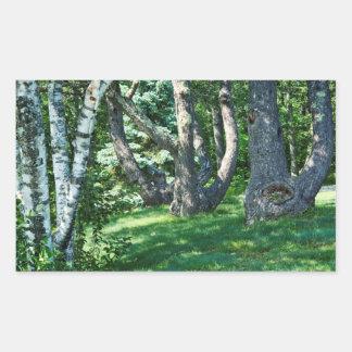 Abhang-Bäume Rechteckiger Aufkleber