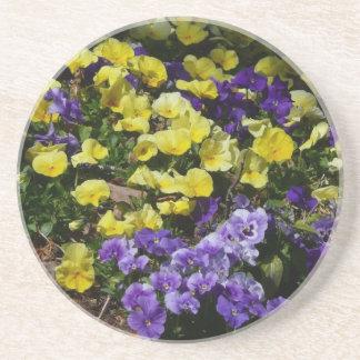Abhang des lila und gelben Stiefmütterchens Getränkeuntersetzer
