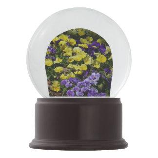 Abhang des lila und gelben Stiefmütterchens Schneekugel