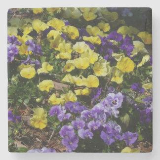 Abhang des lila und gelben Stiefmütterchens Steinuntersetzer