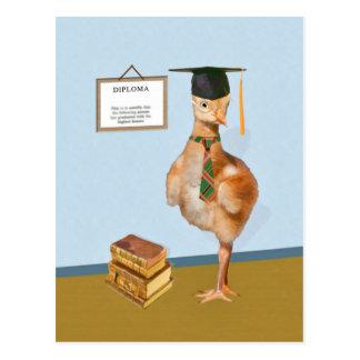 Abschluss, Baby Sandhill Kran Postkarte