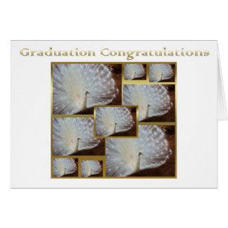 Abschluss-Glückwunsch-Albinopfau stolz Karte