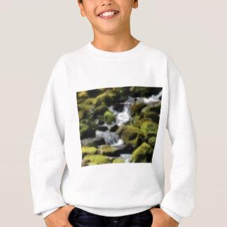 Absteigendes Moos Sweatshirt