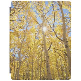Abstrakt von Gilia unter Wildblumen | Kalifornien iPad Smart Cover