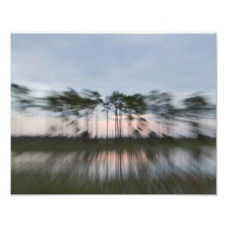 Abstrakte Bäume Fotodruck