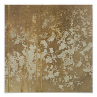 Abstrakte Goldmalerei mit silbernen Tupfen Poster