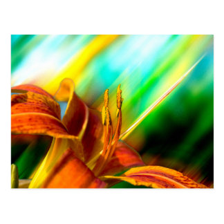 Abstrakte Kunst: Blitz-Lilien-Postkarte Postkarte