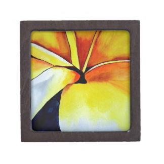 Abstrakte Kunst tropischen Frangipani-Blume Kiste