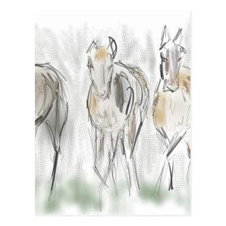 Abstrakte laufende Pferde Postkarten