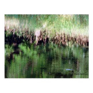 Abstrakte Reflexion auf dem Wasser Postkarte