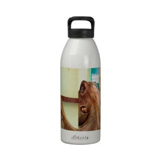 Abstrakte TierZuhause-Krake Wiederverwendbare Wasserflaschen