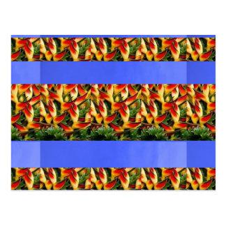 Abstrakte Wellen-bunte Postkarte