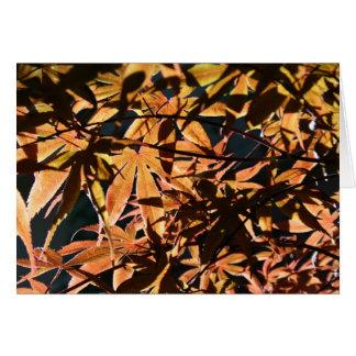 Abstrakter u. japanischer Ahorn Grußkarte