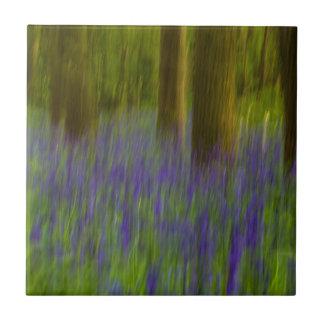 Abstraktes Bluebell-Holz Keramikfliese