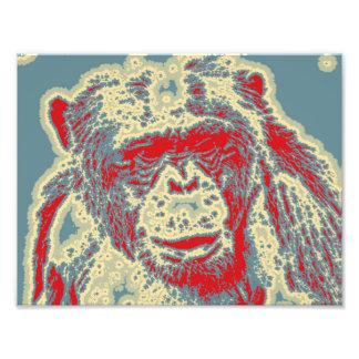 abstraktes Tier - Schimpanse Fotografien