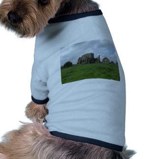 Abtei-Iren Irlands Hore ruinieren Felsen von Hundeklamotten