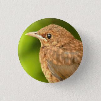 Abzeichen mit Vogel Runder Button 2,5 Cm