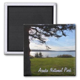 Acadia-Nationalpark, Maine Quadratischer Magnet