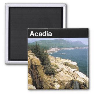 Acadia-Nationalpark Quadratischer Magnet
