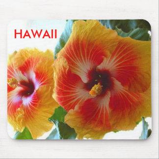 acapulcogoldtwinslg, HAWAII Mousepad