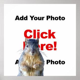 Addieren Sie ein Eichhörnchen-Gewohnheits-Plakat Poster