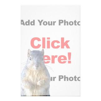 Addieren Sie eine Eichhörnchen-Gewohnheit Briefpapier
