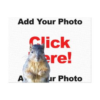 Addieren Sie eine Eichhörnchen-Gewohnheit Leinwanddruck