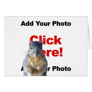 Addieren Sie eine Eichhörnchen-kundenspezifische Karte