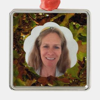 Addieren Sie Foto-Fall-Wolke Silbernes Ornament