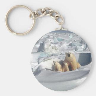 Addieren Sie SLOGAN, um arktischen polaren Bären Schlüsselanhänger
