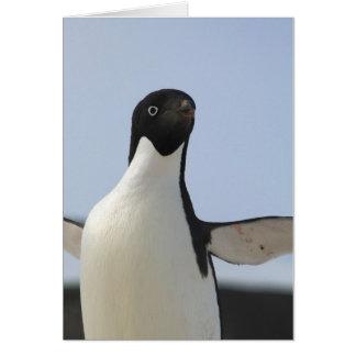Adelie-Pinguin Karte