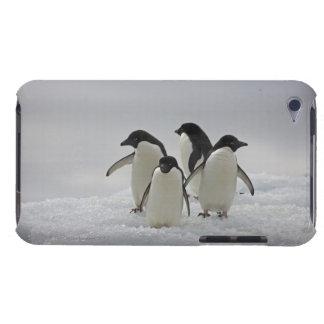 Adelie-Pinguine auf Eis-Flüssen iPod Touch Case-Mate Hülle
