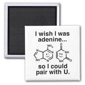 Adenin Quadratischer Magnet