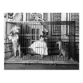 Adgie und sie bildeten Löwe-Vintagen Zirkus 1897 Postkarte