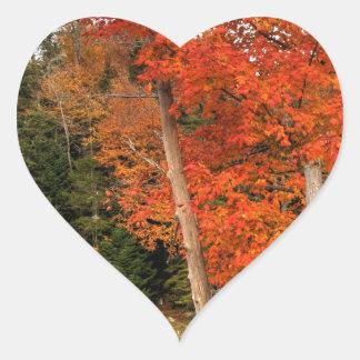 Adirondack Herbst Herz-Aufkleber