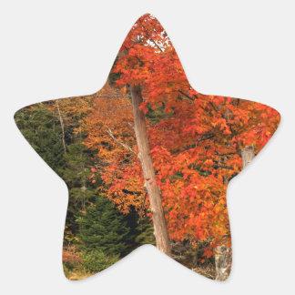 Adirondack Herbst Stern-Aufkleber