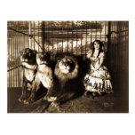 Adjie und die Löwen 1899 Vintager Zirkus Postkarte