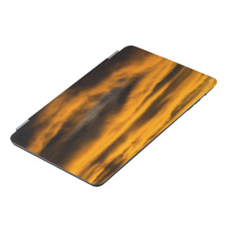 Adler Burnout iPad Mini Cover