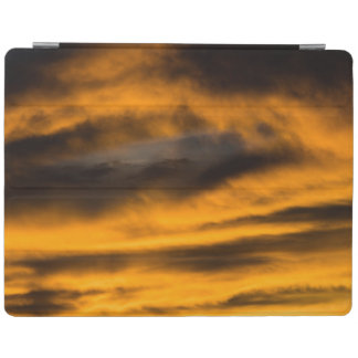 Adler Burnout iPad Smart Cover
