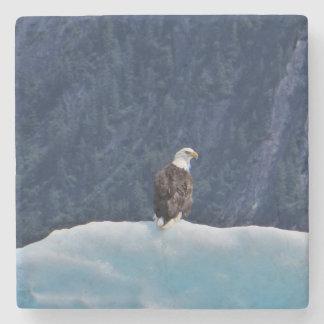 Adler, der auf einem Eisberg-Marmor-Untersetzer Steinuntersetzer