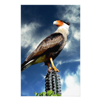 Adler stehend auf einem Kaktus Briefpapier