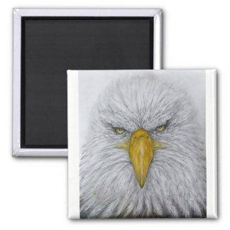 Adler, Weißkopfseeadler, Adler mit amerikanischer Quadratischer Magnet