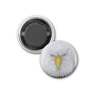 Adler, Weißkopfseeadler, Adler mit amerikanischer Runder Magnet 2,5 Cm