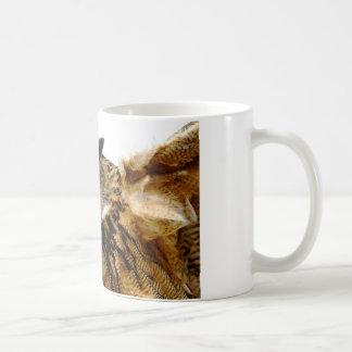 Adlereule in der Flug-Tasse