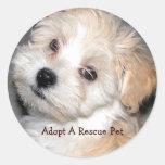 Adoptieren Sie ein Rettungs-Haustier Runder Sticker
