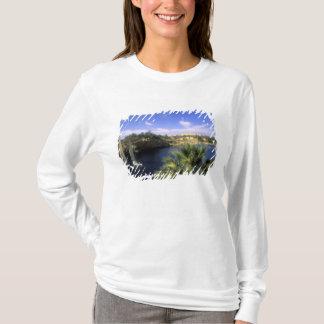 AF, Ägypten, oberes Ägypten, Assuan. Fluss Nil, T-Shirt