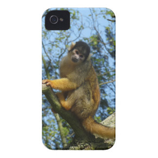 Affe auf dem Baum iPhone 4 Hülle