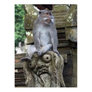 Affe, der an einer Statue in Bali sitzt Postkarte
