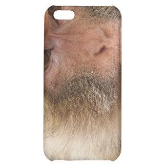 Affe-Gesicht iPhone Fall Hülle Für iPhone 5C
